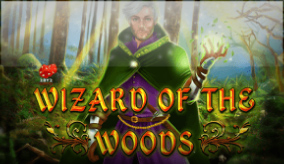 Wizard of the woods
